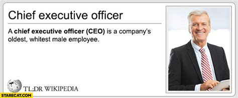 CEO definition Chief Executive Officer is a company's